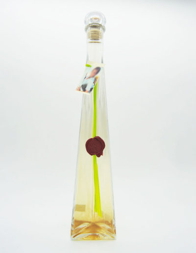 triangulo-rafia-pistacho