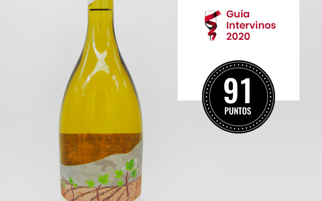guia intervinos 2020